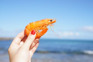 'If it's Aussie, it's good': Australia's seafood industry welcomes Sustainable Seafood Week