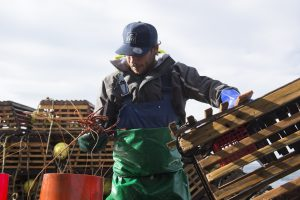 'Back to business': Australian seafood industry buoyed by Federal support