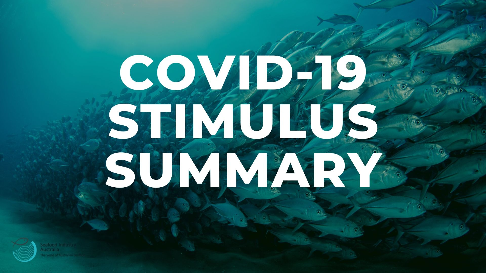 COVID-19 assistance summary and border movement summary
