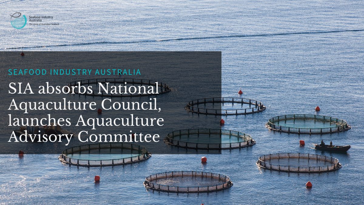 Seafood Industry Australia absorbs National Aquaculture Council, launches Aquaculture Advisory Committee