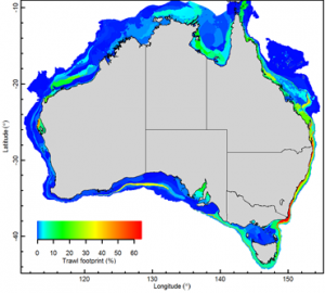 Study assessing the trawling footprint of Australian fisheries finds less than 3.5% affected