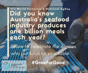 'One billion meals and counting': Australia's fishers call for recognition on World Fisheries and National Agriculture Day