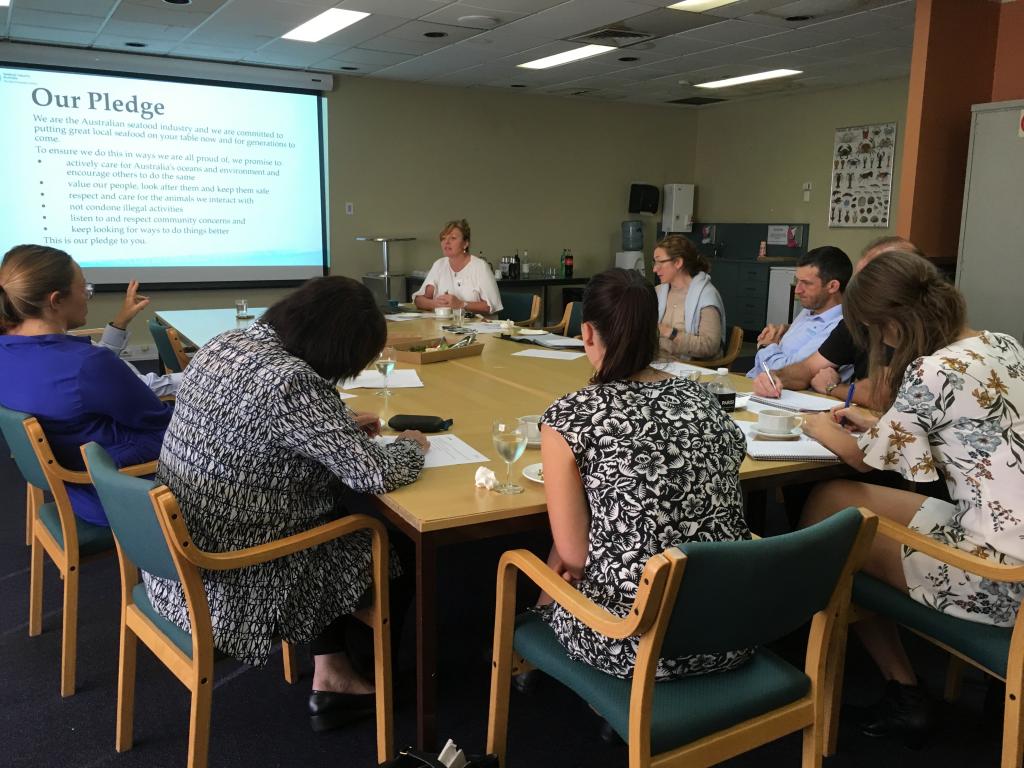 'Our Pledge' workshop makes a splash in Sydney and Hobart