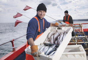 Commonwealth managed fisheries hit a six