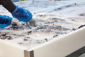 The impact of coronavirus on the Australian seafood industry