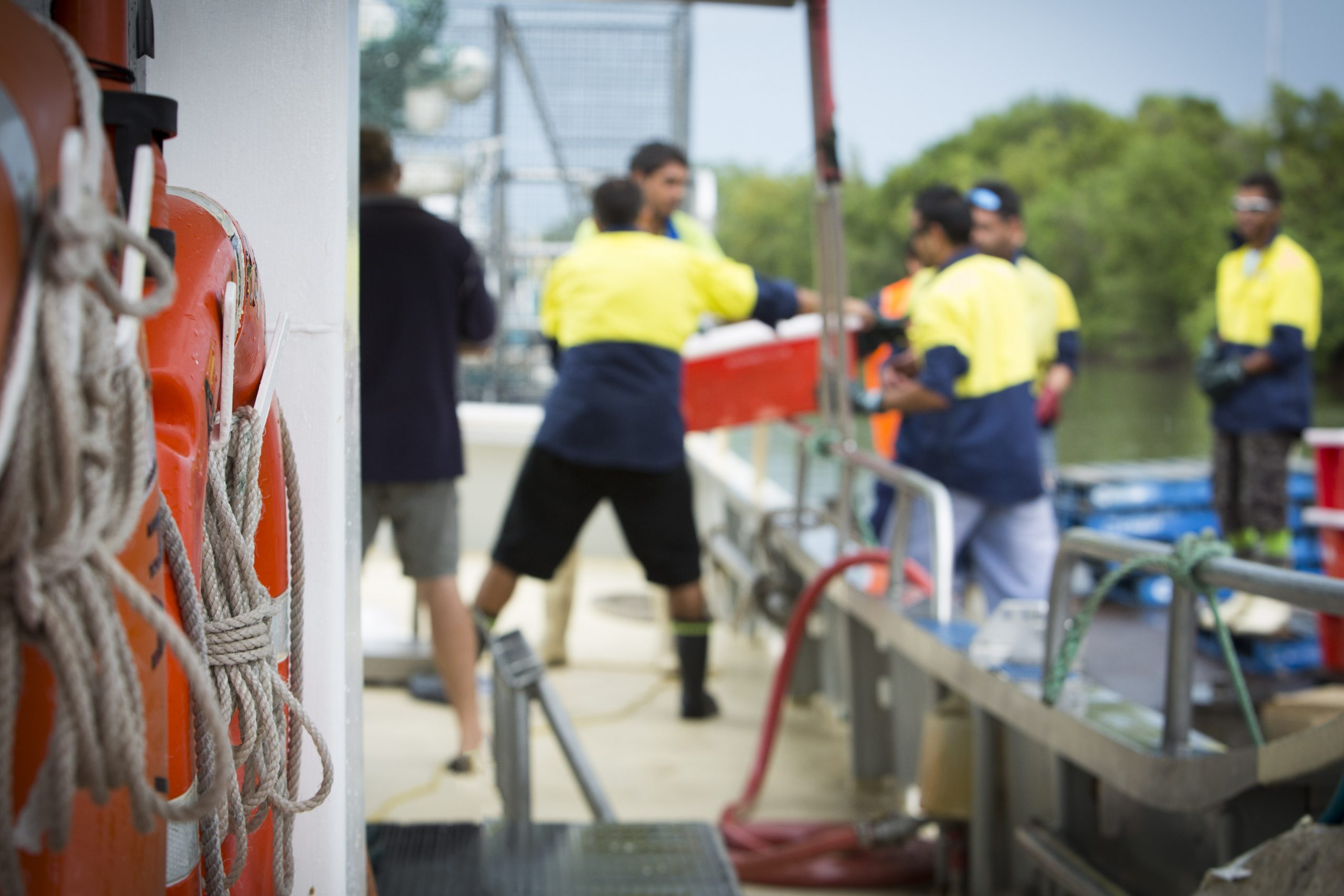 Australian seafood industry welcomes IFAM extension