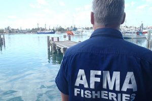 Australian seafood industry welcomes AFMA levy deferral