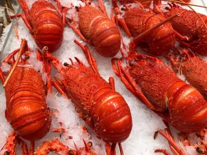 'No need to abandon tradition': Easter festivities can still go ahead, says Australian seafood industry