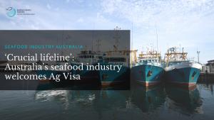 'Crucial lifeline': Australia's seafood industry welcomes Ag Visa