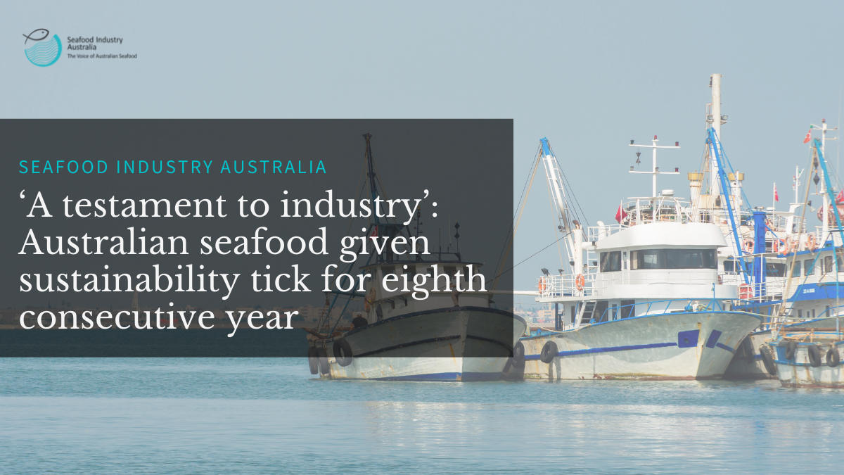 'A testament to industry': Australian seafood given sustainability tick for eighth consecutive year